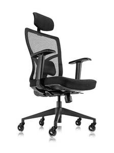 Ergonomic Mesh Office Chair w/ Roller Blade Wheels ~ Ridiculously Comfortable High Back Computer Desk Chair & Fully Adjustable from OASIS ~ Assembled & Ready!
