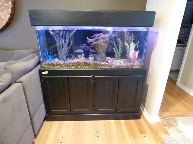 80 Gallon Fish Tank With Complete