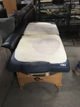 Massage Therapy Table with Face Rest