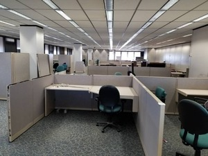 |||||Build an Office|||||Steelcase Cubicles, Office Chairs, Conference Table, Lateral Cabinets, Office Furniture, Walls, Clocks, Carpet Tile, Partitions, Filing Cabinet, Ceiling Tiles|||||See Video Walk-through|||||Take as much as you want!!!!