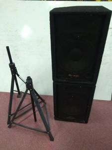 Pair of Phonic 12  2-Way Monitor Speakers