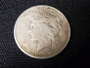1925 Liberty Silver Dollar- Ungraded
