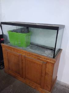 Big Aquarium with Stand and Accessories